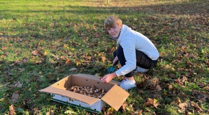 ,,Tulpen für Brot'' – Die letzte Zwiebel ist gepflanzt!