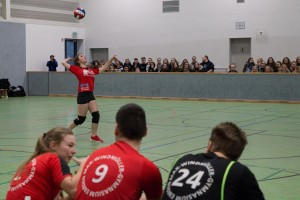 MAX 27.01 - Volleyball Schüler-Lehrer-6102
