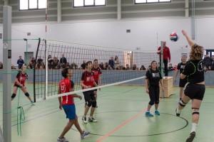 MAX 27.01 - Volleyball Schüler-Lehrer-6407