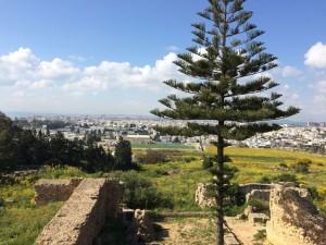 Tunis8
