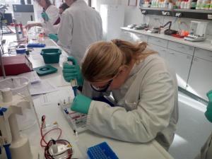 Bio-Praktikum 2020 LR (13)