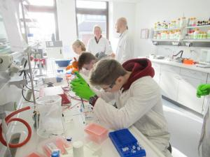 Molekulargenetik Praktikum 2019 LR (11)