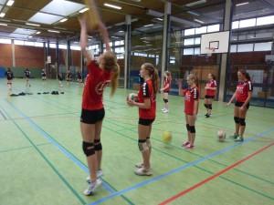 Volleyball_JtfO_Bezirksentscheid_2016